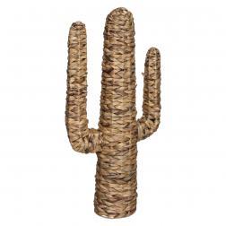 """Cactus """"Hacienda"""", jacinthe d'eau H75 cm"""